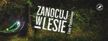 "Program ""Zanocuj w lesie"""